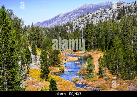 Rock Creek (on the Little Lakes Valley hiking trail) surrounded by meadows and evergreen forests in the Eastern Sierra mountains, California - Stock Photo