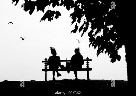 Two young female friends talking while sitting on an isolated park bench under the tree in high cobtrast black and white - Stock Photo