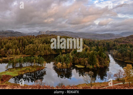 Panoramic early morning autumn view across Tarn Hows with the Langdale Pikes in the distance