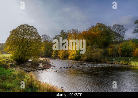 Stepping stones across the River Wharfe near Hebden in the Yorkshire Dales National Park in the autumn - Stock Photo