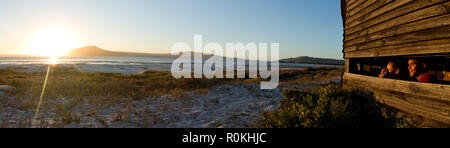 Panoramic view of a couple bird watching in the West Coast National Park - Stock Photo