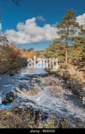 North Pennines AONB Landscape,  Low Force Waterfall, Teesdale with autumn colours and bright sunshine - Stock Photo