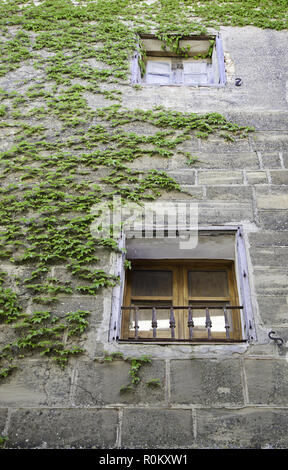 Window with rural grass, detail of an old window in a facade, rural and classic - Stock Photo