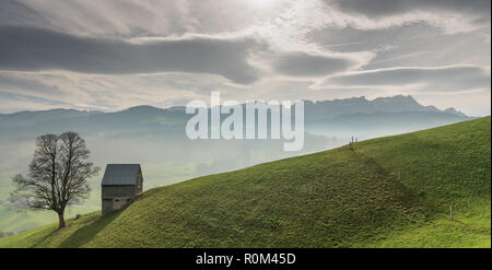 idyllic and peaceful mountain landscape with a secluded wooden barn and lone tree on a grassy hillside and a great view of the Swiss Alps behind - Stock Photo