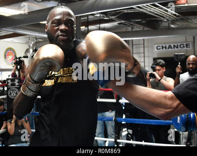 Santa Monica, California, USA. 5th Nov, 2018. WBC World Champion DEONTAY WILDER media work out at the Churchill Gym. Wilder gets ready for in his highly anticipated WBC Heavyweight World Championship defense against Tyson Fury on December 1. Credit: Gene Blevins/ZUMA Wire/Alamy Live News - Stock Photo