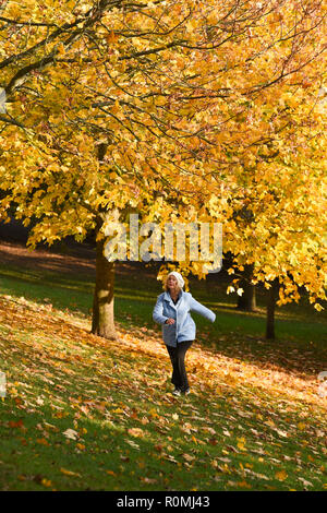 Brighton UK 6th November 2018 - A walker enjoys a stroll through the colourful Autumn leaves in Queens Park Brighton on a beautiful warm sunny afternoon Credit: Simon Dack/Alamy Live News - Stock Photo