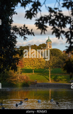 Brighton UK 6th November 2018 - Autumn leaves reflected in Queens Park pond Brighton on a beautiful warm sunny afternoon Credit: Simon Dack/Alamy Live News - Stock Photo