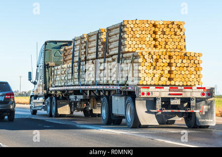 September 23 2018 Sacramento / CA / USA - Truck transporting peeled logs on the interstate in Northern California - Stock Photo