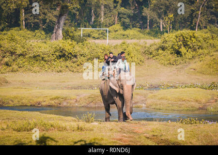 Chitwan,Nepal - Oct 23,2018: Elephant Safari,Group of  Tourists riding on Elephant for jungle safari in Chitwan National Park,Sauraha. Elephant Riding - Stock Photo