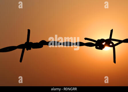 Setting sun behind a fence of barbed wire - Stock Photo