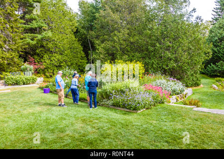 Thuya Garden in Northeast Harbor on Mount Desert Island in Maine, United States - Stock Photo