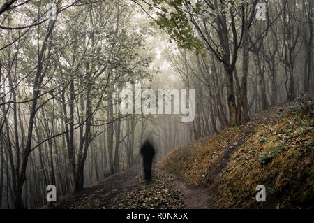 A ghostly figure walking in a misty, winter forest, with a vintage muted edit - Stock Photo
