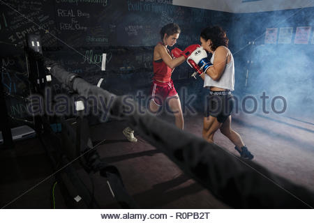 Tough female boxers training in boxing ring - Stock Photo
