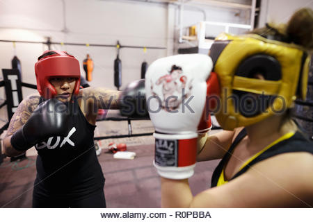 Female boxers training in gym - Stock Photo