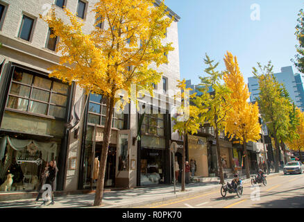 Garosu-gil, Nov 1, 2018 : Garosu-gil in Gangnam district, Seoul, South Korea. Garosu-gil is a trendy tree-lined street of galleries, restaurants, cafes and clothing boutiques. Credit: Lee Jae-Won/AFLO/Alamy Live News - Stock Photo