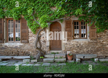 The entrance door of a house in picturesque French village of Sainte-Croix-en-Jarez, framed by a wisteria creeper over a random rubble medieval wall - Stock Photo