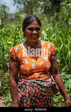 Portrait of an Indian woman standing in her vegetable garden. Colourful scene, lady dressed in traditional sarong smiles for the camera. - Stock Photo