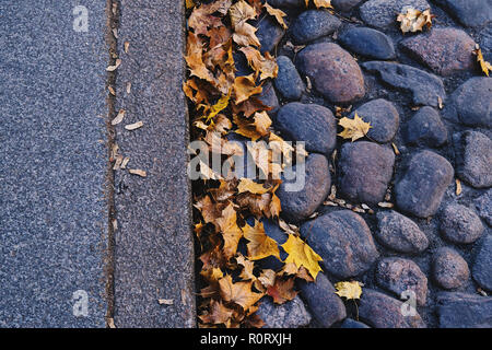 Close up view of abstract autumn background with maple leaves and old cobbled surface. Grunge vintage texture with copy space - Stock Photo