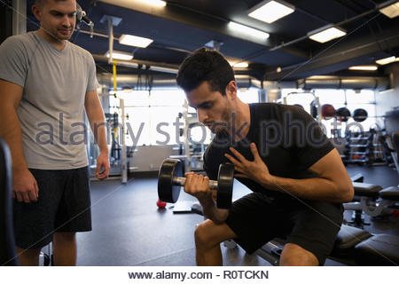 Men exercising, doing biceps curls with dumbbell in gym - Stock Photo