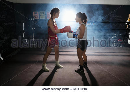 Female boxers training, touching gloves in boxing ring - Stock Photo