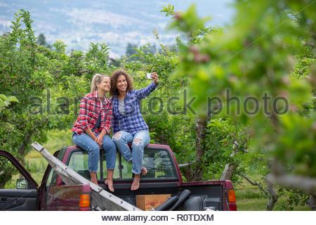 Female farmers taking selfie on truck in orchard - Stock Photo
