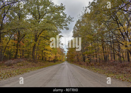 Rural, dirt or gravel road threw a forest. This photo was taken outside of the Huron Nature Center, in a heavily forested area by Lake Huron. - Stock Photo