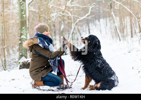 Woman and dog giving high-five in the snow - Stock Photo