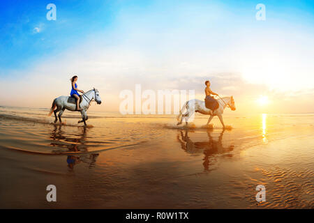 Love background. Family and horse in the sunshine. Couple in love on beach in sunset. Ride horseback of the sea in sun rays. - Stock Photo