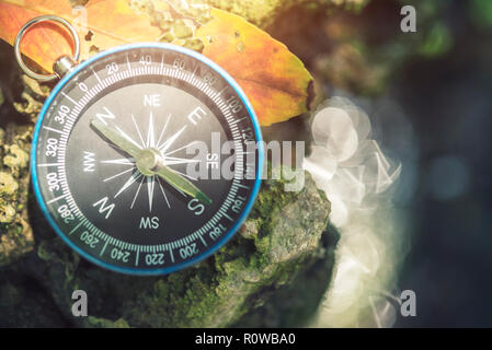Travel background, compass on ground with leaf in nature with sunlight. Success concept. - Stock Photo
