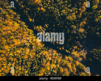 Aerial view of road in the autumn forest, view from above, drone point of view. Inspiring autumn season landscape background. - Stock Photo
