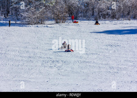 Adygea, Russia - January 23,  2017: Young happy couple with children riding on an inflatable sledding tubing on a snowy slope, a man shoots a video on - Stock Photo
