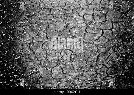 Drought riverbed, Bad Karlshafen, Upper Weser Valley,  Weser Uplands, Weserbergland, Hesse, Germany, Europe - Stock Photo