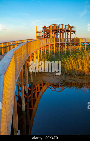 Colorful sunset over boardwalk path through coastal swamp area. Parnu coastal hiking trail. Estonia. - Stock Photo