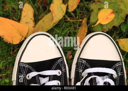 Top view black sneakers on a yellow autumn leaves background - Stock Photo