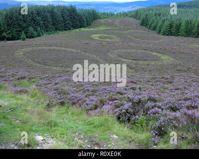 The Point of Resolution, Minch Moor, Borders County, Scotland, UK in August - Stock Photo