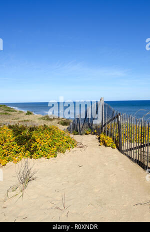 Scenic view at Marconi Station on the Cape Cod National Seashore in Wellfleet, Massachusetts with dunes, ocean and a clear, blue sky - Stock Photo