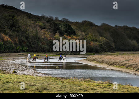 Pony trekking along the Gannel River at low tide in Newquay Cornwall. - Stock Photo