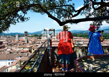 Tourist admiring the view on top of Guinigi tower in Lucca, Province of Lucca, Tuscany, Italy, Europe - Stock Photo