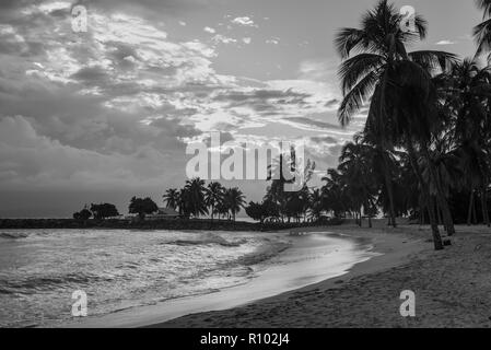 Sunset on the paradise tropical beach, the Gosier in Guadeloupe island, Caribbean. Black and white photography. - Stock Photo