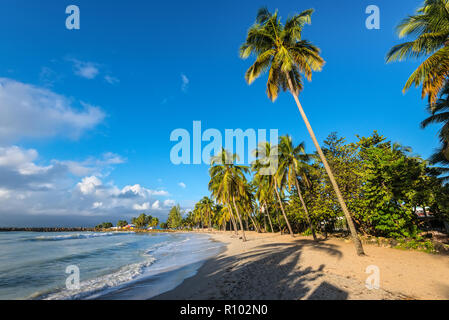 Le Gosier, Guadeloupe - December 22, 2016: Paradise tropical sunset beach , the Gosier in Guadeloupe island, Caribbean. Travel, Tourism and Vacations  - Stock Photo