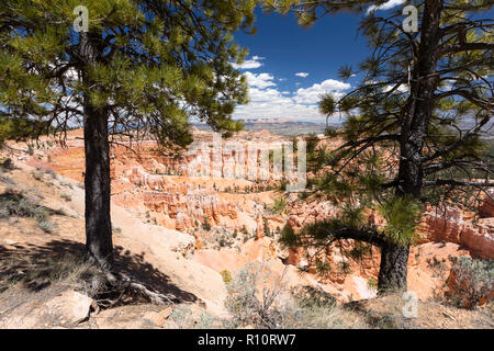 View of hoodoo formations from along the rim near Sunrise Point in Bryce Canyon National Park, Utah, USA. - Stock Photo