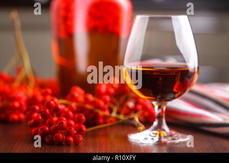 Autumn berry alcohol drink, selfmade home - Stock Photo