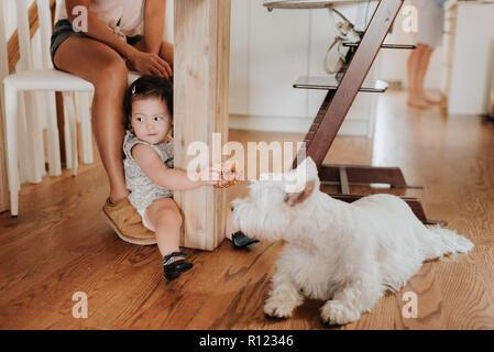 Girl sitting on floor near pet dog - Stock Photo