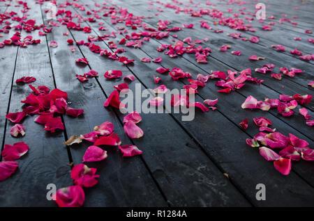 Red rose petals on dark wooden textured floor. Close up - Stock Photo