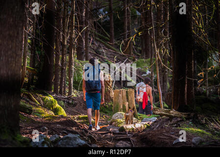 Rock climbers and dog walking through forest, Squamish, Canada - Stock Photo