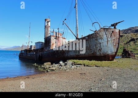 The Old Whaling Ship Petrel at Grytviken, South Georgia, South Atlantic, Sub-Antarctic.  There is a museum here. Sir Ernest Shackleton is buried here - Stock Photo