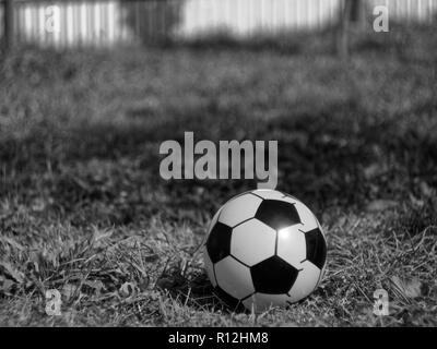 rubber soccer ball on grass in summer, black and white photo - Stock Photo