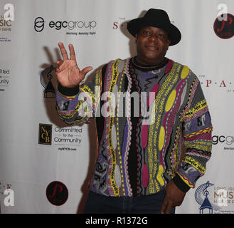 Westbury, United States. 08th Nov, 2018. WESTBURY, NY - NOV 8: DJ Chuck Chillout attends the 2018 Long Island Music Hall of Fame induction ceremony at The Space at Westbury on November 8, 2018 in Westbury, New York. Credit: The Photo Access/Alamy Live News - Stock Photo