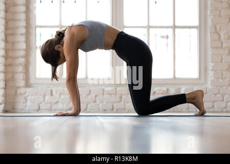 Woman practicing yoga Cat Pose, Marjaryasana in studio - Stock Photo