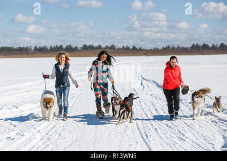 Three happy girls owners playing with their dogs in winter nature. - Stock Photo